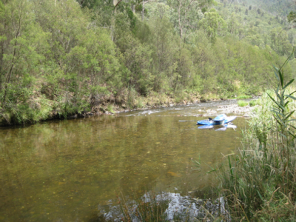 Photo of the Dargo River
