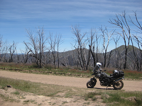 At the beginning of Dargo High Plains Road - photo of bike, road and scenery